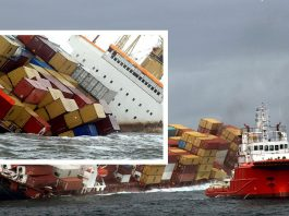Daily Logistic,Cargo Claims ,Marine Insurance